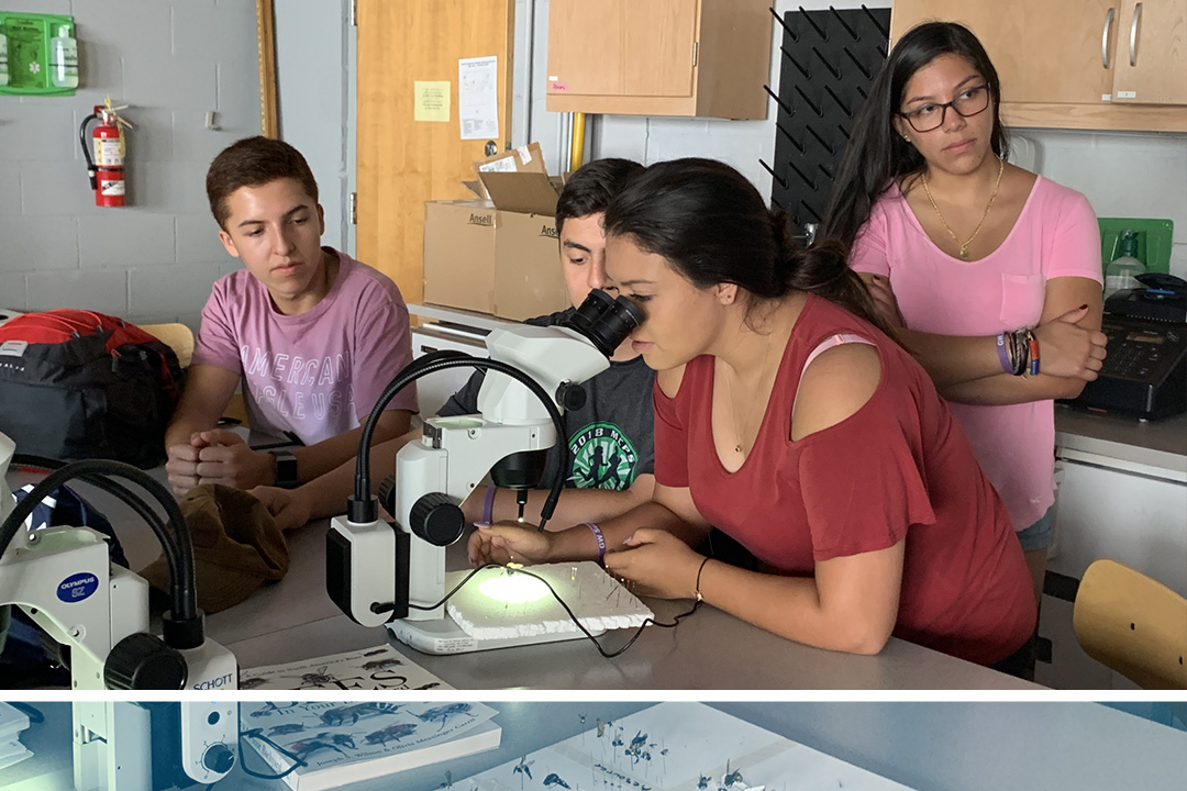 Female Camino student looking through a microscope in a lab