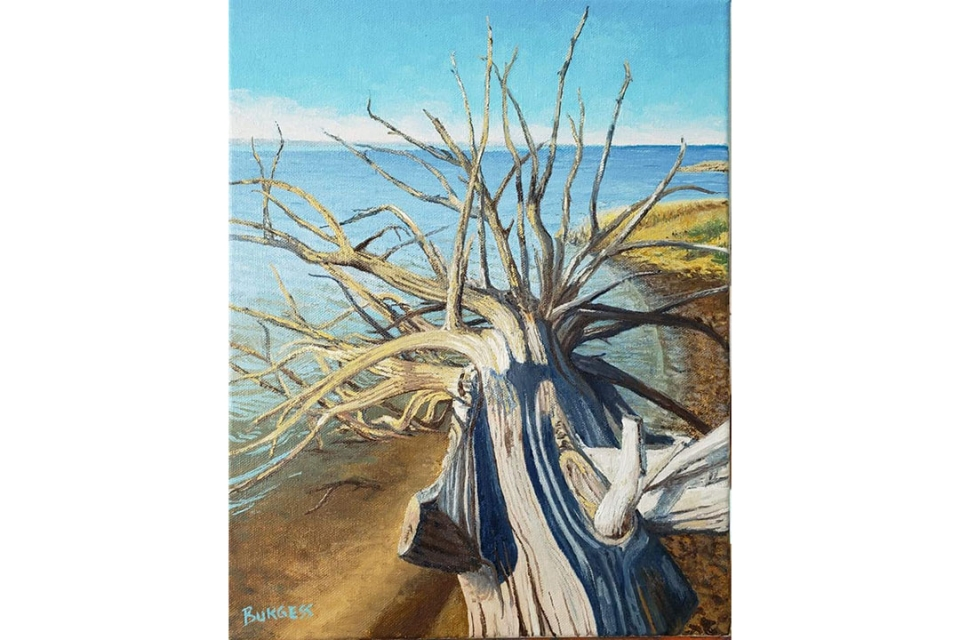A painting showing a dead tree on a beach